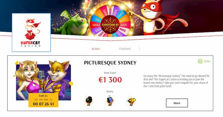 Casino Super Cat Tournaments and Lotteries are in the photo.