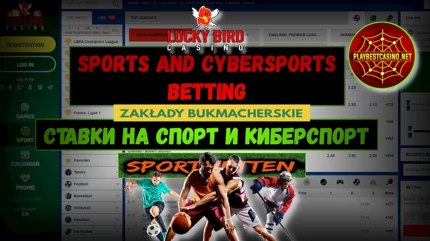 Беттинг на Спорт (Esport) в Lucky Bird Casino! + Бонус есть на фото.