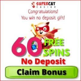 Super Cat Casino No Deposit 60 free spins for Balticbet.net is on photo.